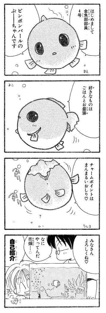 Pu33_3